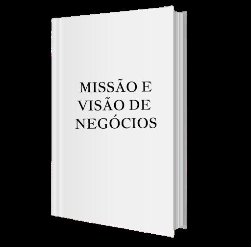 MASSAO E VISAO DE NEGOCIOS